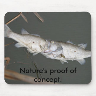 Nature's proof of concept. mouse pad