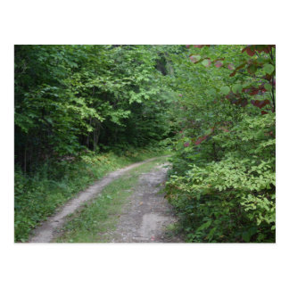 Natures Trail Postcard