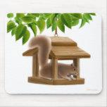 Naughty Bird Feeder Squirrel Mousepad