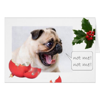 Naughty Christmas pug Card
