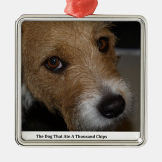 Naughty Dog Ate The Chips Bad Dog Ate The Cheese Christmas Ornament