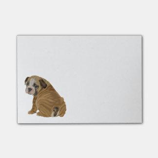 Naughty English Bulldog Puppy Post-it® Notes