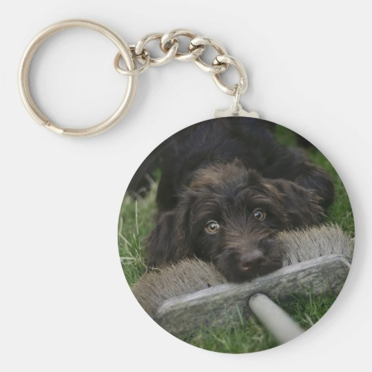 Naughty Labradoodle Basic Round Button Key Ring