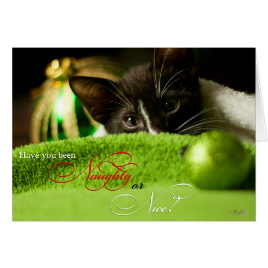 Naughty or Nice Kitten Holiday Card