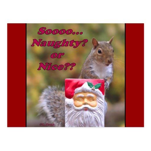Naughty or Nice? Postcard