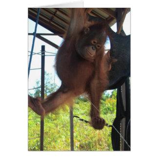 Naughty Primate Potty Break Greeting Card
