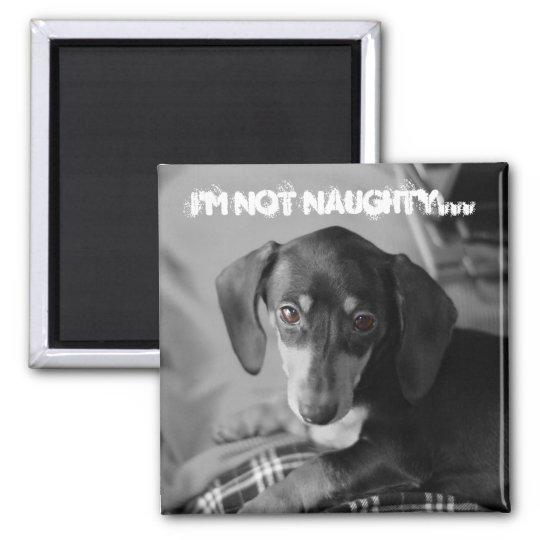 Naughty weiner dog square magnet