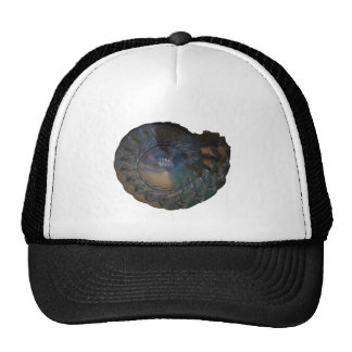 nautalis shell mesh hats