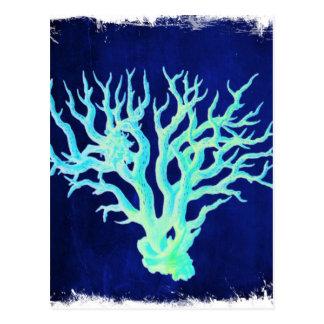 Nautical coastal chic beachy blue Coral Reef Postcard