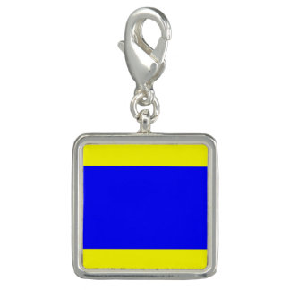 "Nautical Flag Signal Code Letter D ""Delta"""