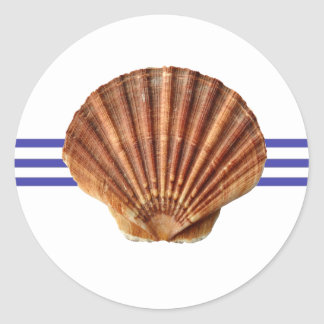 Nautical Seashell - Circle Sticker