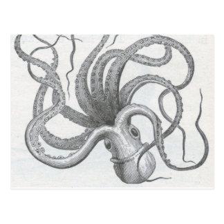 Nautical steampunk octopus vintage kraken design postcard