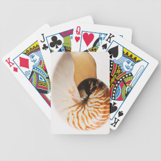 Nautilus seashell (Nautilus stenomphalus) Bicycle Playing Cards