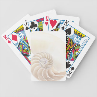 Nautilus shell, close-up bicycle playing cards