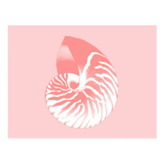 Nautilus shell - coral pink and white postcards