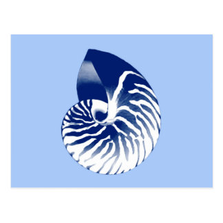Nautilus shell - navy, white & light blue postcard