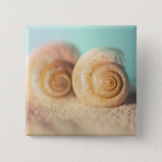 Nautilus Shells On Beach 15 Cm Square Badge