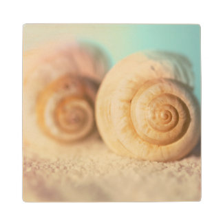 Nautilus Shells On Beach Wood Coaster