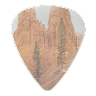 Navajo Loop Trail, Bryce Canyon Acetal Guitar Pick