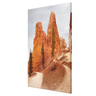 Navajo Loop Trail, Bryce Canyon Canvas Print