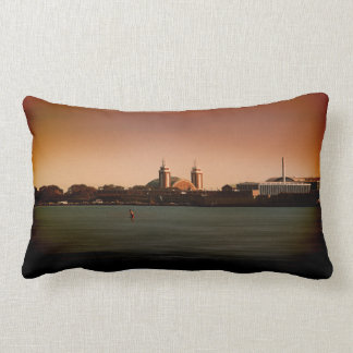 Navy Pier in Color- Pillow