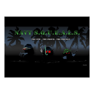 Navy SQUEALs. Poster