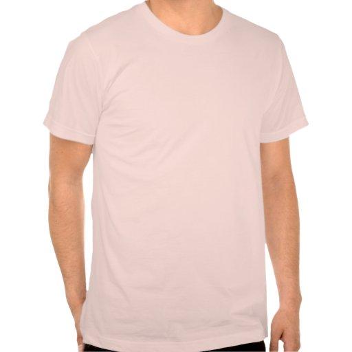 Nayan Cat T Shirt