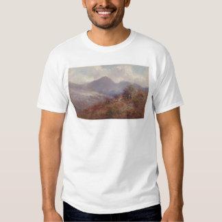 Near Almaden (1259) T Shirts