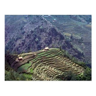 Near Tapelijung, Nepal Postcard