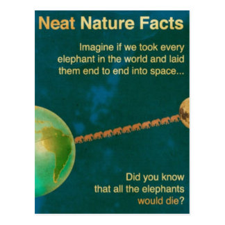 neat nature facts postcard