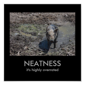 NEATNESS: it's highly overrated Poster