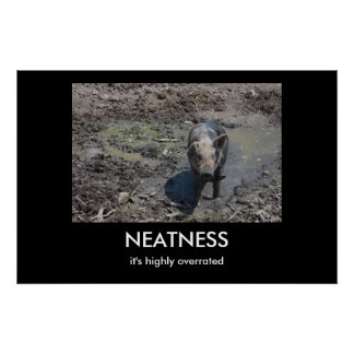 NEATNESS POSTER