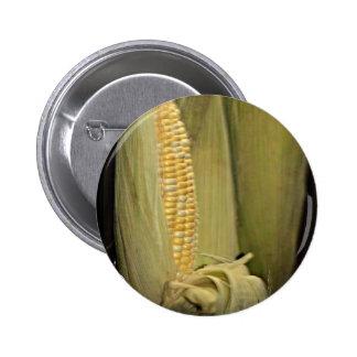 Nebraska Cornhusker State Button