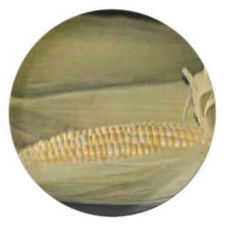 Nebraska Cornhusker State Plates