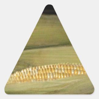 Nebraska Cornhusker State Triangle Sticker