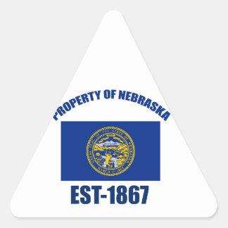 Nebraska design triangle sticker