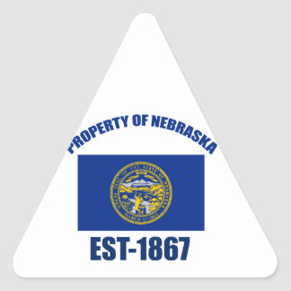 Nebraska design triangle sticker