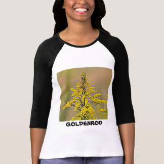 Nebraska Goldenrod T-Shirt
