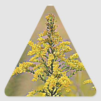 Nebraska Goldenrod Triangle Sticker