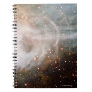 Nebula N44C Note Books