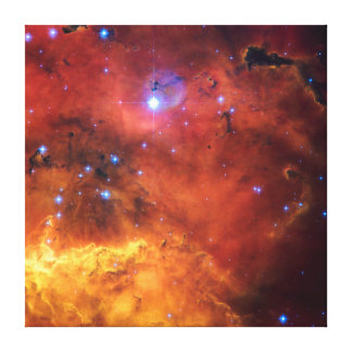Nebula NGC 2647 NASA Space Astronomy Canvas Prints