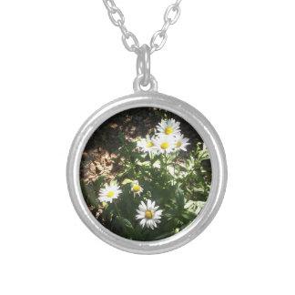 Necklace Daisy's