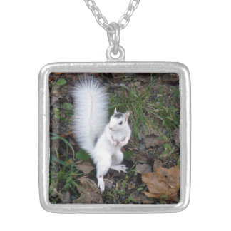 Necklace - White Squirrel