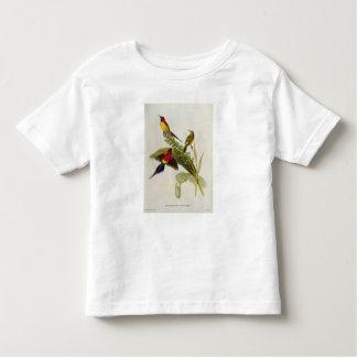 Nectarinia Gouldae Toddler T-Shirt