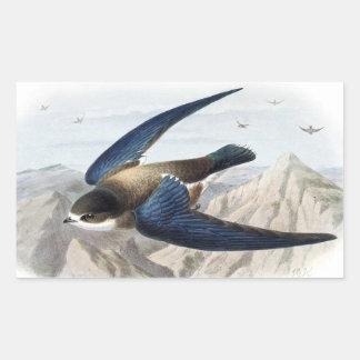 Needle-tailed Swift Rectangular Sticker
