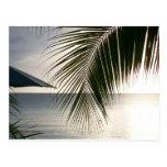 Negril Beach Scene Postcard