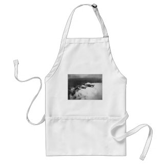 Negro Pilots in Shark-Nosed P-40 Fighter Aircraft Aprons