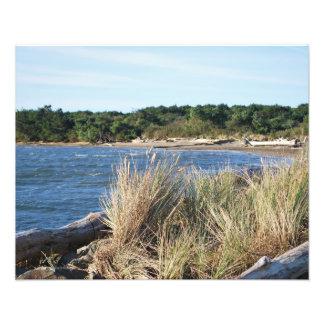Nehalem Bay State Park Photo Print