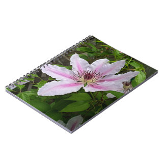 Nelly Moser Clematis 2016 Spiral Notebook