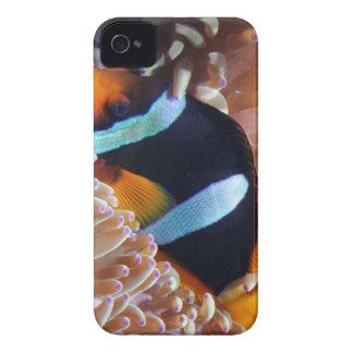 Nemo iPhone 4 cover